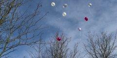 luftballons_1000.jpg